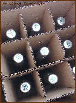 bier (3)